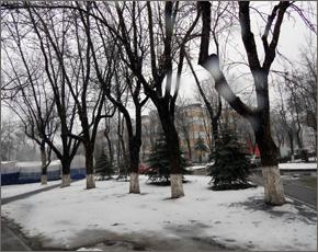 Прогноз погоды на 11 января: местами небольшой снег и туман, днём до минус 9