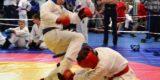 В IV брянских юношеских играх боевых искусств приняли участие 900 спортсменов