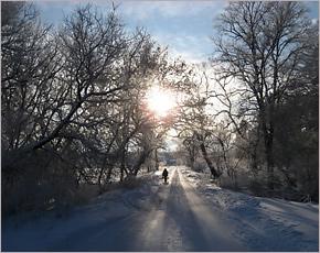 В конце недели в Брянске ожидается около 4-6 градусов мороза