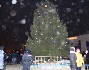 В новогодних гуляниях в Брянске и райцентрах области участвовали всего 20 тыс. человек