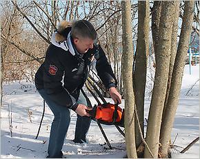 Брянский губернатор лично сделал обрезание пилой. Деревьев