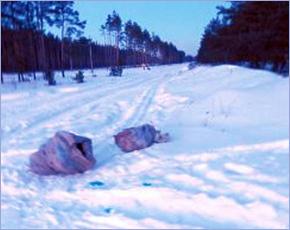 СМИ: в мешках на окраине Брянска были трупы лис, а не собак