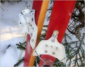 Массовые лыжные гонки в Брянской области продолжаются третью неделю