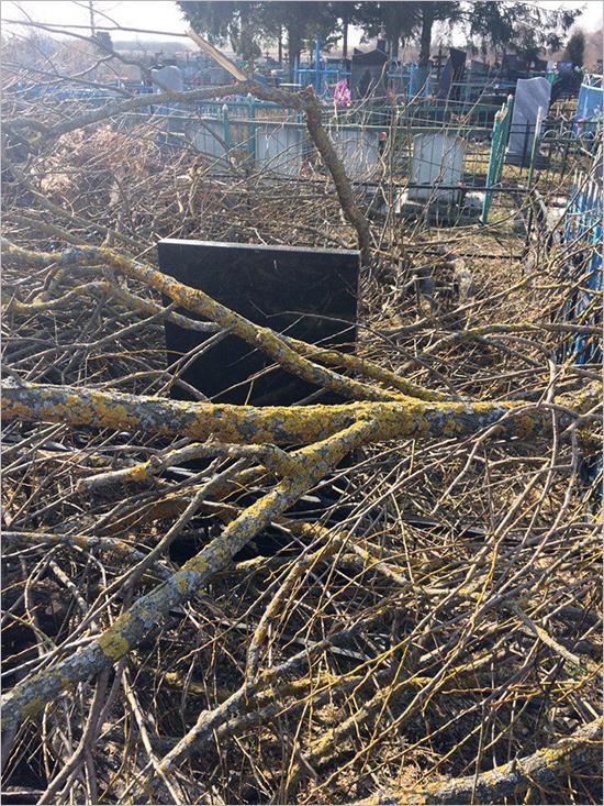 «Всем миром» на кладбище в карачевском Юрасово свалили мусор прямо на могилы (ФОТО)