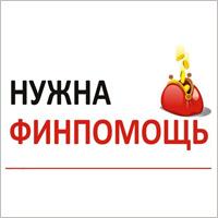Зоозащита в Брянске: бизнес на сострадании