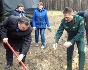 Всероссийский день посадки леса: под Унечей высажено более 1600 новых деревьев