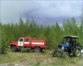 Очередной для региона лесной пожар ликвидирован в Суражском районе