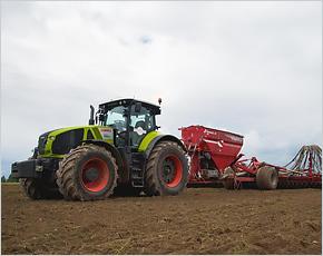 «Мираторг» увеличил площади под кукурузу для «мясного проекта» на 37%