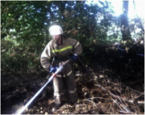 Торфяной пожар в Злынковском районе тушили 4 часа