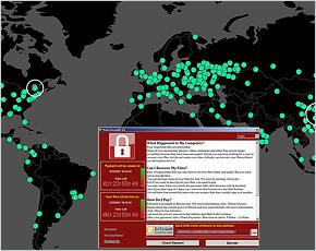 Брянские МРЭО возобновили работу после ликвидации последствий кибератаки