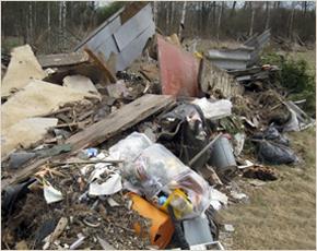 Россельхознадзор требует ликвидировать свалку на сельхозземлях в Рогнединском районе