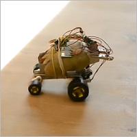 Инновация для Брянской области: робот из картофеля