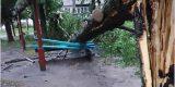 Новозыбков остаётся после урагана частично без света и воды