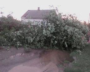 В Новозыбкове после урагана рекомендовано не пить некипяченую водопроводную воду