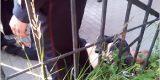 В центре Орла произошла перестрелка и захват заложников (ФОТО)