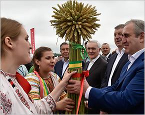 Сергей Неверов назвал брянский День поля «Днём российского поля»
