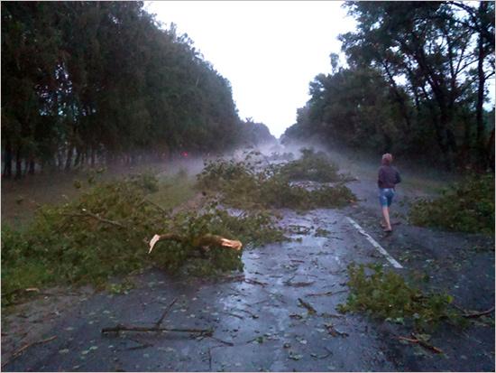 В Новозыбкове принимают заявления от владельцев повреждённых ураганом домов