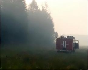 Ситуация под контролем: в Суражском районе пожарные всё воскресенье боролись с торфяным пожаром
