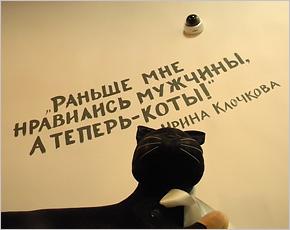 «Если у вас нет мужа, но есть кот — вы больше замуж не выйдете» — рейтинг домашних питомцев одиноких людей
