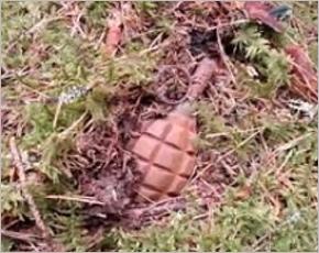 В день выборов в Брянске найдена граната