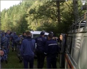 Заблудившегося пенсионера в дятьковском лесу ищут 96 человек и десяток собак
