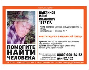 Престарелый грибник в дятьковском лесу до сих пор не найден — МЧС