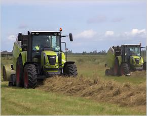 «Мираторг» заготовит более 220 тыс. тонн кормов для своих тульских ферм