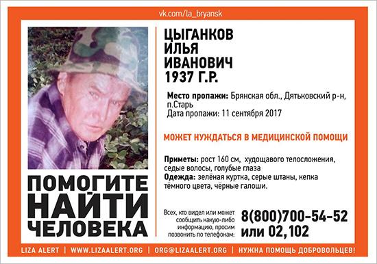 Потерявшегося в лесу 80-летнего дятьковского грибника ищут пятые сутки