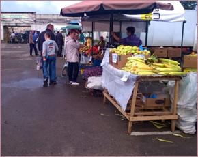 Вторые ярмарки выходного дня в Брянске: реализовано 72% товара