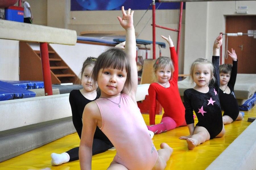 Брянские гимнасты почтят память Семёна Гетманского турниром