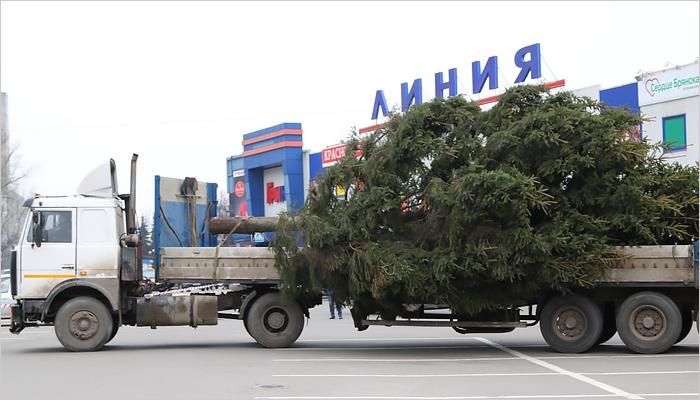 Первую живую новогоднюю елку вБрянске встретили песнями иплясками
