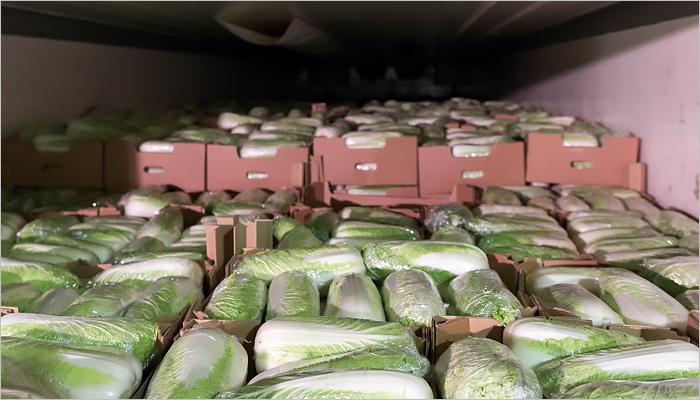 Брянские пограничники задержали 5 большегрузов ссанкционной продукцией