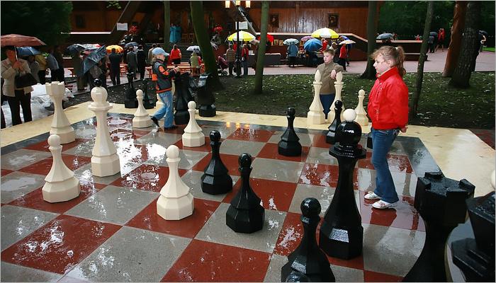 В Брянске вновь появилась уличная шахматная доска