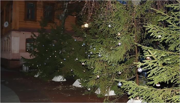 Снеговики-гитаристы, волонтёрские ёлки и инсталляция «2018»: новогоднее настроение в центре пасмурного Брянска