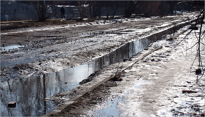 Весна в Брянске началась: вскрылась речка Богомазовка