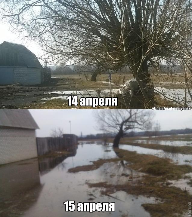 Быстрый подъём воды в Десне у Радицы-Крыловки: половодье дошло до крайних домов