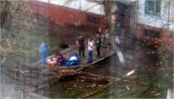 В Брянске в понедельник продолжали падать деревья, повреждённые ветром в субботу