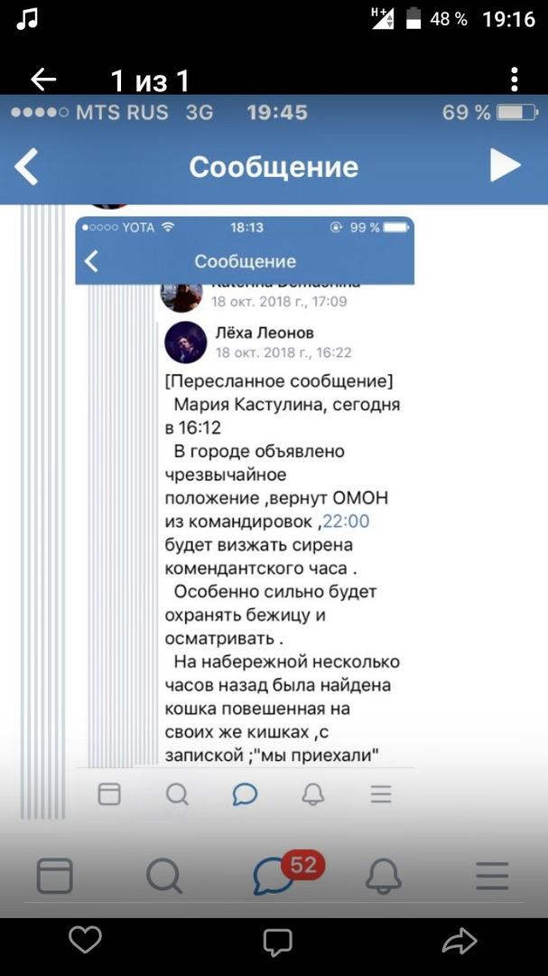 Кошка, Керчь и сирены спровоцировали в Брянске молодёжную панику в соцсетях