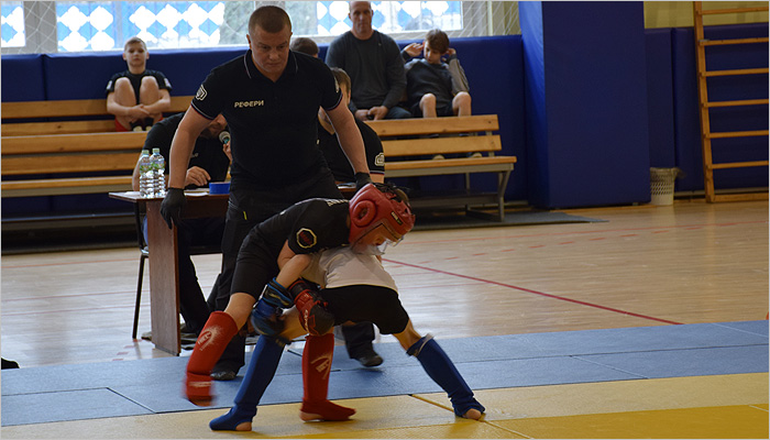 Чемпионат Брянской области по MMA: впервые в октагоне