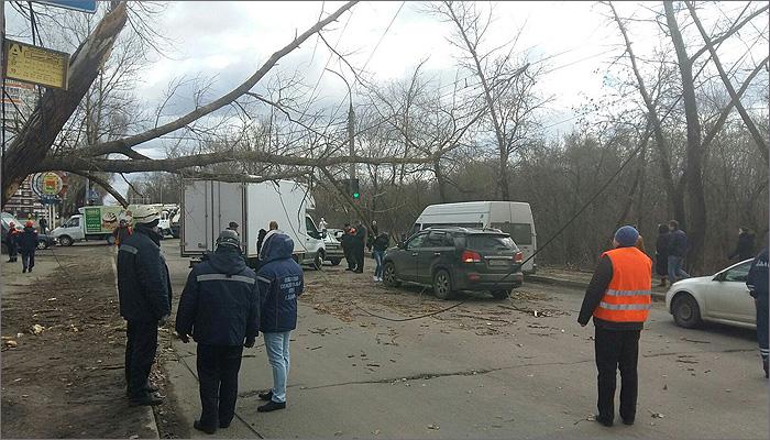 На «проклятом месте» у ЖК «Речной» вновь упало дерево на дорогу