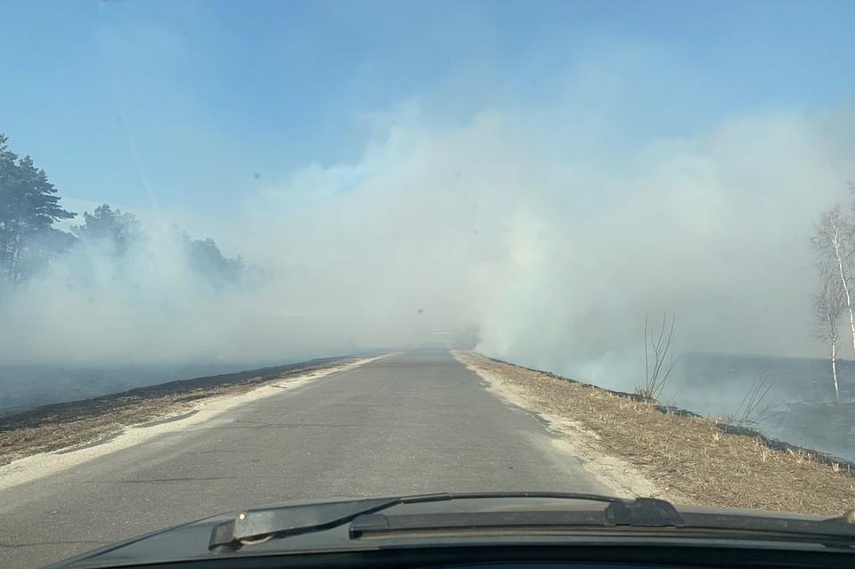 Травяные палы едва не уничтожили выгоничское село