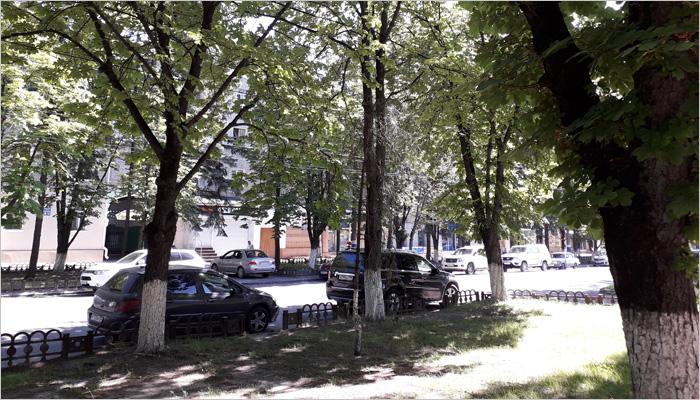 Проект реновации общественной территории в Брянске: превращение улицы Куйбышева в пешеходную зону