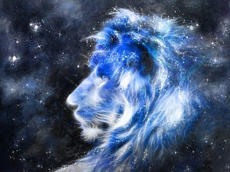 Поймать удачу за хвост: как подобрать талисман по знаку Зодиака