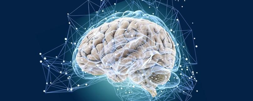 Мозг на автопилоте – что делать?
